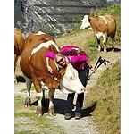 Foto von Herzensmensch78, Steiermark